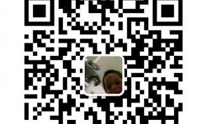 永泰房东直租精装公寓13414845114