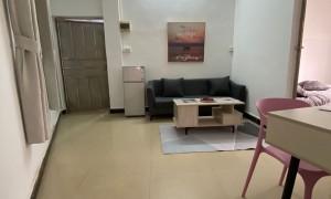 荔湾区菊树地铁精装两房一厅招租