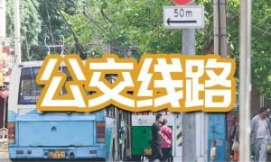 2021年2月广州公交调整汇总