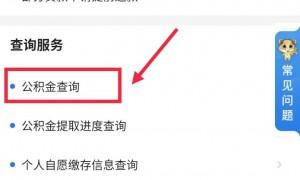 2020广州穗好办app公积金缴费信息查询流程