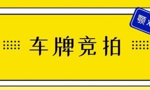2020年7月广州竞拍车牌技巧一览