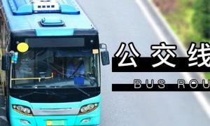 2020广州公交调整汇总(持续更新)
