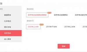 2020广东10月自考成绩查询方式