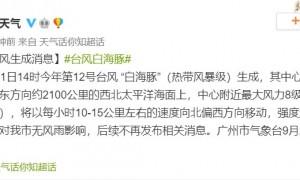 2020年第12号台风白海豚对广州有影响吗?
