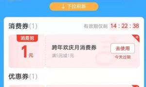 广州双十二百亿消费券领取后在哪查看?