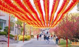 2021年10月14日起广州莲花山恢复开放