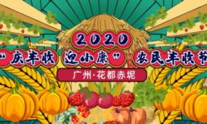 2020广州花都区丰收节系列活动安排