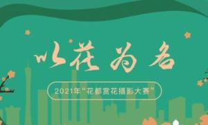 2021广州花都赏花摄影大赛时间+参与方式