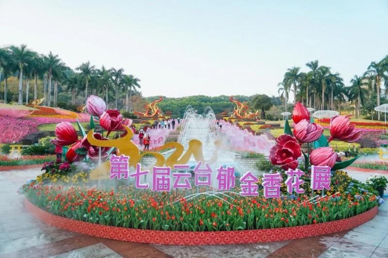 广州2021元宵节白云山郁金香花展还有吗?