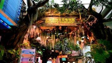 2201清明节广州正佳雨林生态植物园双人特惠购票入口